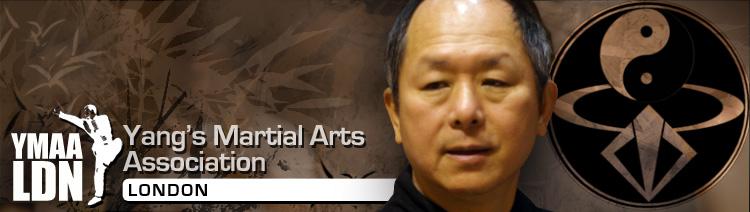 *R.A. West Associates, Inc. -- Chin Shan Yang, Ph.D ...